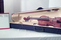 MUS110 Violin & bow w/case (3 in stock)
